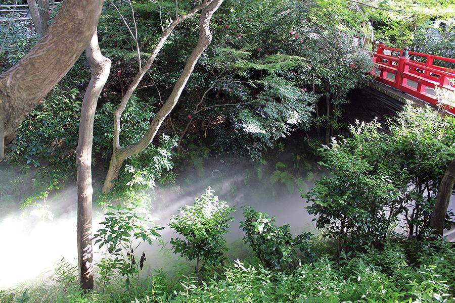 ほたる沢と弁慶橋
