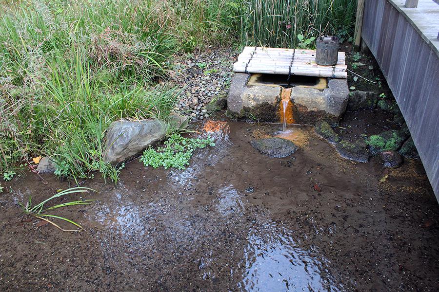 湧き水の井戸