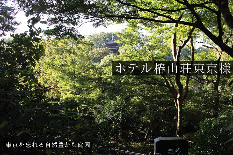 東京であることを忘れる自然豊かな庭園